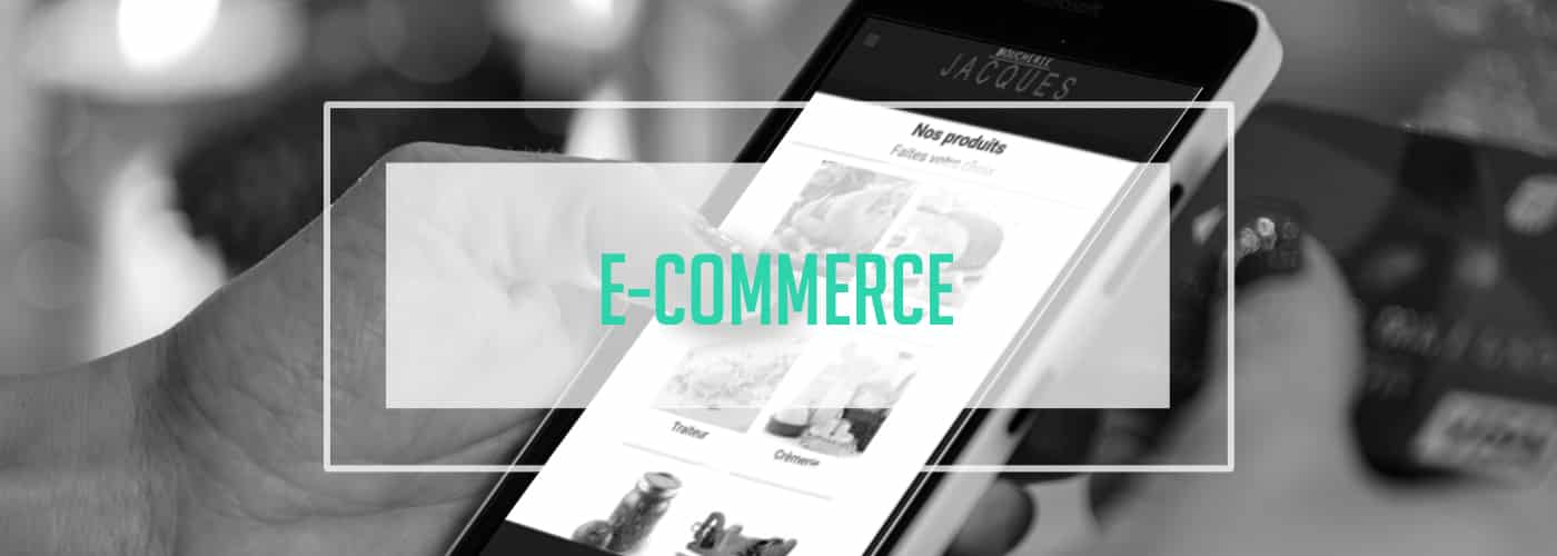 E-commerce-Apitic-1 E-Commerce