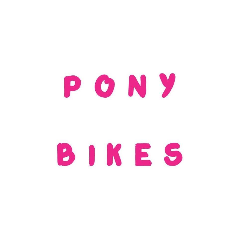 POny-Bike World Electronics Forum (WEF)